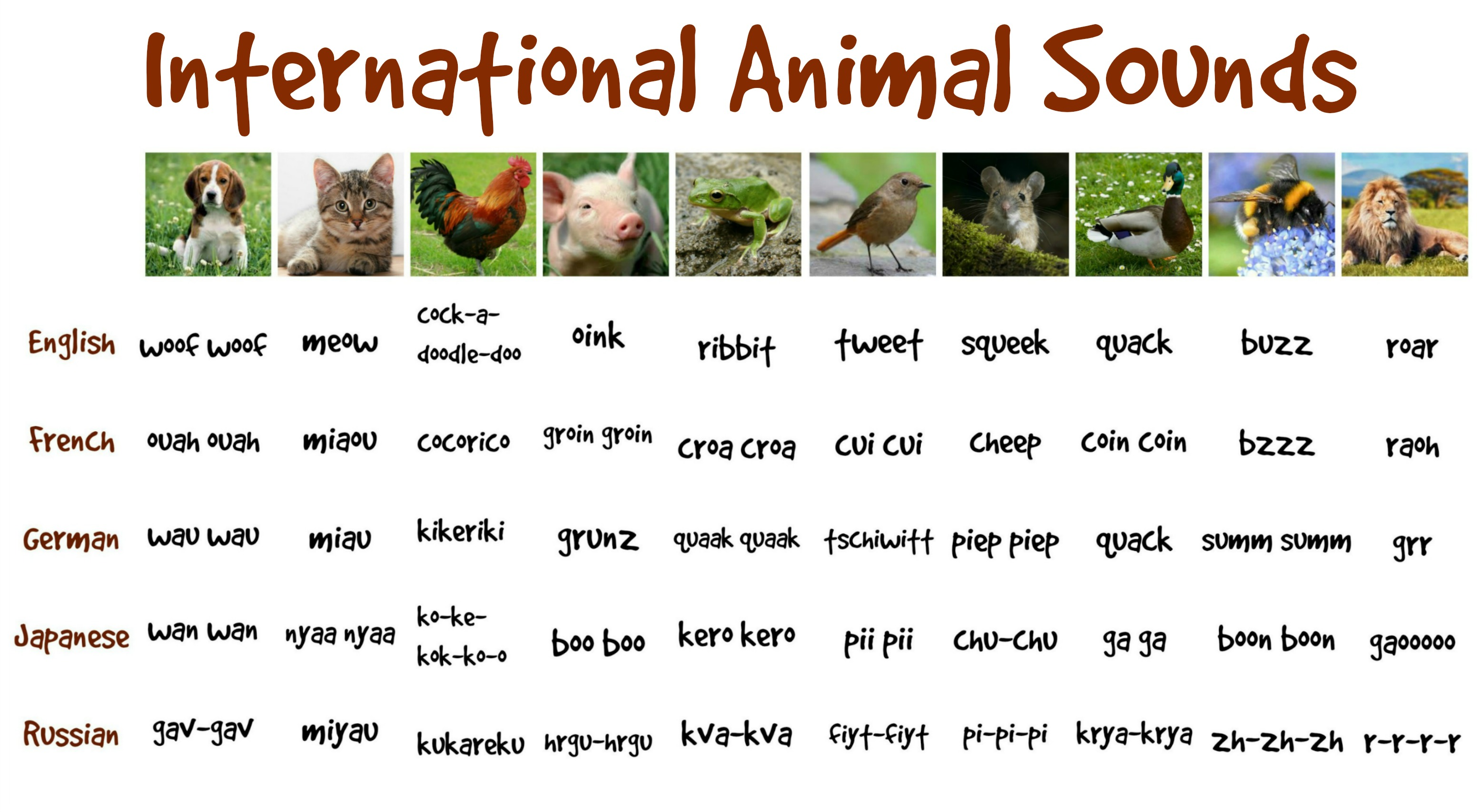 sounds animal funny international animals sound fun chart different languages very zh rooster japan funwithkids boo