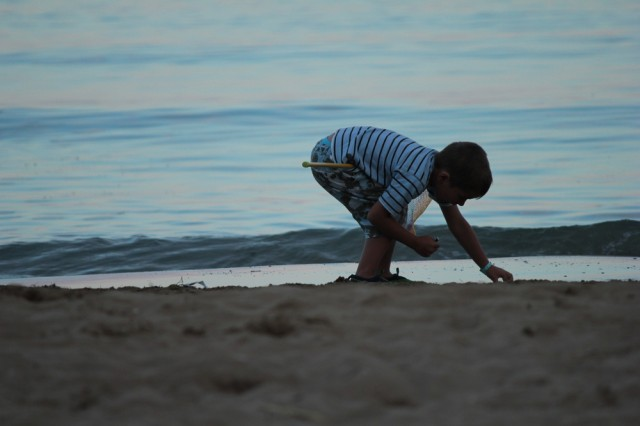 sand shell hunt boy