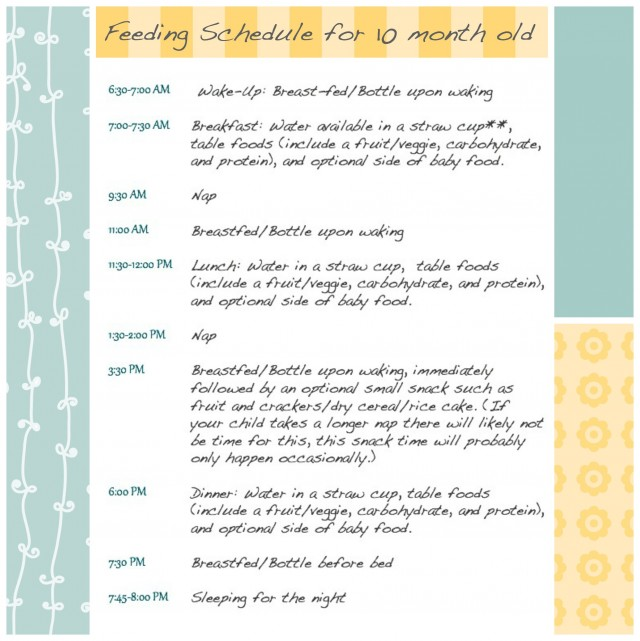 feeding-schedule-10-month