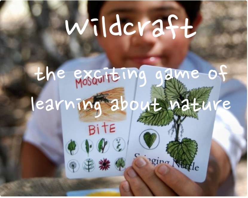 wildcraft-board game